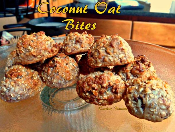 coconut oat bites